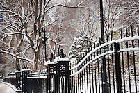 City Hall Park in Lower Manhattan's Civic Center after a Snow Storm, New York City, New York State, USA