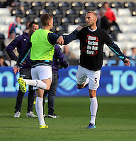 (L-R) Alfie Mawson and Mike van der Hoorn of Swansea City wearing Show Racism Red Card before the Premier League match between Swansea City and Watford at The Liberty Stadium on October 22, 2016 in Swansea, Wales, UK.