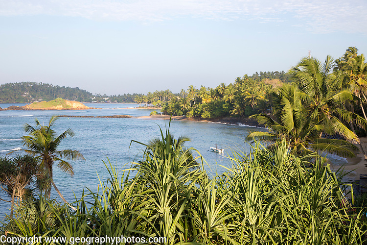Tropical landscape of palm trees and blue ocean, Mirissa, Sri Lanka, Asia