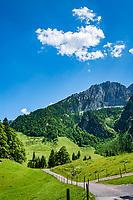 Oesterreich, Tirol, Kaiserwinkl, bei Walchsee: Wanderregion unterhalb vom Zahmen Kaiser | Austria, Tyrol, Kaiserwinkl, near Walchsee: hiking area with Zahmer Kaiser mountain