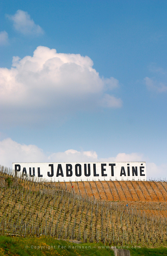 A big white sign with black letters Paul Jaboulet Aine against a blue sky, in front, rows of vines The Hermitage vineyards on the hill behind the city Tain-l'Hermitage, on the steep sloping hill, stone terraced. Sometimes spelled Ermitage. Tain l'Hermitage, Drome, Drôme, France, Europe