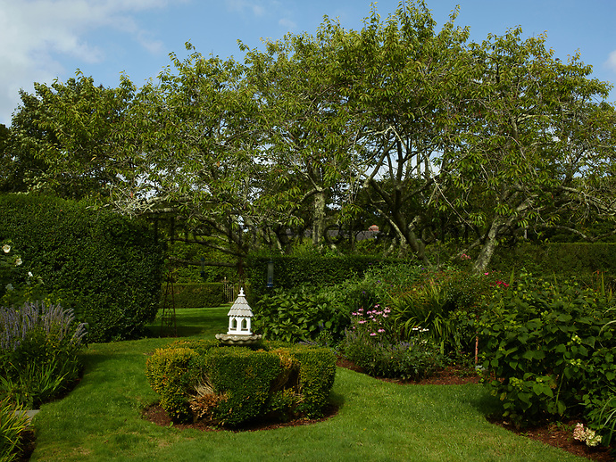 A bird house is set amongst the shrubbery in the well-tended garden.