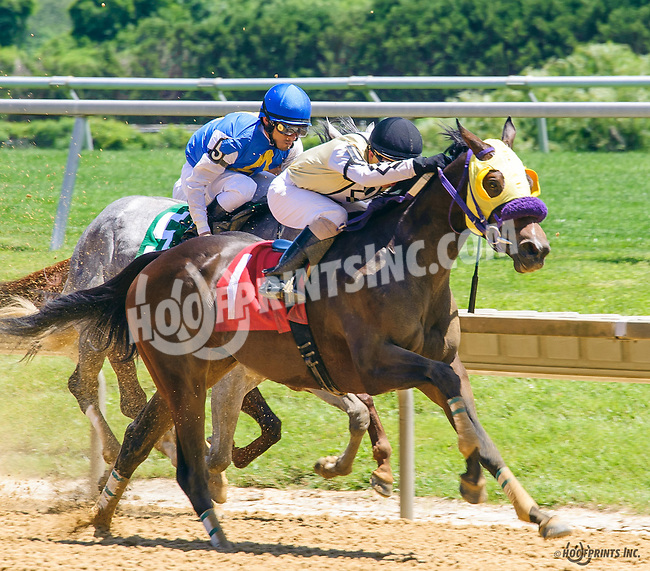 Jrock winning at Delaware Park on 6/13/16