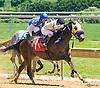 Jrock winning at Delaware Park on 6/13/16