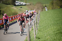 Michael Matthews (AUS/Sunweb) up the Keutenberg<br /> <br /> 54th Amstel Gold Race 2019 (1.UWT)<br /> One day race from Maastricht to Berg en Terblijt (NED/266km)<br /> <br /> ©kramon