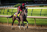 LOUISVILLE, KY - MAY 01: Classic Empire gallops at Churchill Downs on May 01, 2017 in Louisville, Kentucky. (Photo by Alex Evers/Eclipse Sportswire/Getty Images)