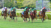 Raging Bull (no. 3), ridden by Joel Rosario and trained by Chad Brown, wins the 112th running of the grade 3 Saranac Stakes for three year olds on September 01, 2018 at Saratoga Race Course in Saratoga Springs, New York. (Bob Mayberger/Eclipse Sportswire)