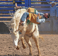 2015 SELLS RODEO and TOKA TOURNAMENT