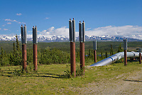 Trans Alaska oil pipeline traverses the tundra south of Delta Junction, Alaska