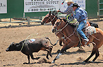 The Nevada Star team competes in the ranch doctoring event at the Minden Ranch Rodeo in Gardnerville, Nev., on Sunday, July 22, 2012..Photo by Cathleen Allison