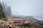 Summer fog on Schoodic Point in Acadia National Park, Maine, USA