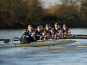 19.01.2014. River Thames, London, England. Oxford University Boat Club Trial VIIIs, Stubborn VIII John Redos [Bow], Tom Watson [2], Joseph Dawson [3], James Mountain [4], Karl Hudspith [5], Nicholas Hazell [6], Sam O'Connor [7], Constantine Louloudis [Stroke], Sophie Shawdon [Cox] 8 . The Trial serves as part of the selection process to determine who will represent Oxford University in the 160th running of the University Boat Race on April 6th 2014. The trial for the two eights, named Persistent and Stubborn is the only occasion during the season that the squad members can race side-by-side over the full four and a quarter miles of the Championship Course between Putney and Mortlake in a simulation of The BNY Mellon Boat Race.
