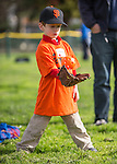 LAMV PONY Intro to Baseball for 4-6 year olds at Montclaire Elementary School in Los Altos. January 30, 2016
