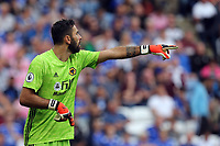 Rui Patricio of Wolverhampton Wanderers during Leicester City vs Wolverhampton Wanderers, Premier League Football at the King Power Stadium on 11th August 2019