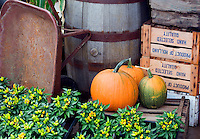 Fall display at Al's Garden nursery, Oregon