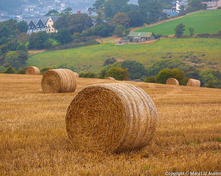 County Cork, Ireland: Haybales in a field near the town of Kinsale