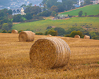 County Cork, Ireland: Haybales in a field near the town of Kinsale