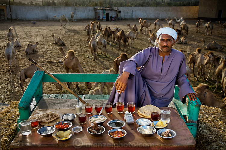 Camel broker Saleh Abudl Fadlallah with his day's worth of food at the Birqash Camel market outside Cairo, Egypt. (From the book What I Eat: Around the World in 80 Diets.) The calorical value of his day's worth of food on a typical day in the month of April was 3200 kcals. He is 40 years of age; 5 feet, 8 inches tall; and 165 pounds. MODEL RELEASED