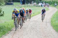 Benjamin Declercq  (BEL/Sport Vlaanderen-Baloise)<br /> <br /> Dwars door het Hageland (1.1)<br /> 1 Day Race: Aarschot &gt; Diest (194km)