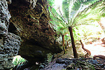 Trowutta Arch, Tarkine, Tasmania