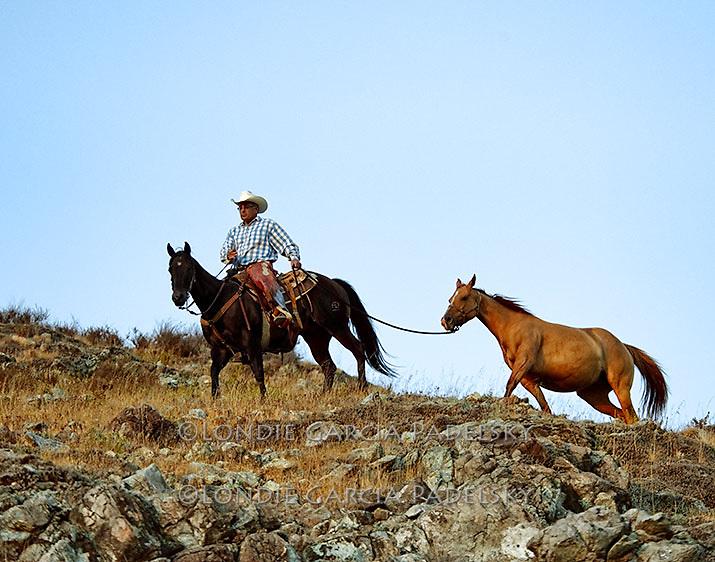 Cowboy leading horse over the mountains, San Luis Obispo, California (Ron Garcia)