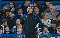 Everton Caretaker Manager David Unsworth during the Carabao Cup round of 16 match between Chelsea and Everton at Stamford Bridge, London, England on 25 October 2017. Photo by Andy Rowland.