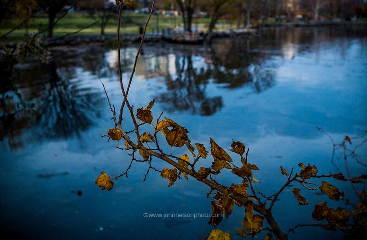 On the banks of the Potomac river, Alexandria, VA