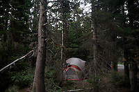 A tent stands among trees at the Many Glacier campground in Glacier National Park in Montana.