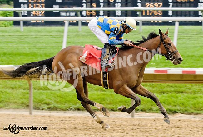 Edyanne winning at Delaware Park racetrack on 6/14/14