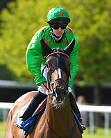 Threshholdofadream ridden by Joey Haynes goes down to the start Winner of The Smith & Williamson Fillies' Novice Stakes (Class 5))  during Afternoon Racing at Salisbury Racecourse on 17th May 2018