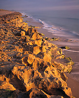 Limestone Outcrops, Blowing Rock Preserve, Florida    Atlantic Coast near West Palm Beach