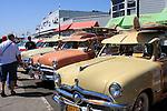 Woodies on the Wharf in Santa Cruz, Fords