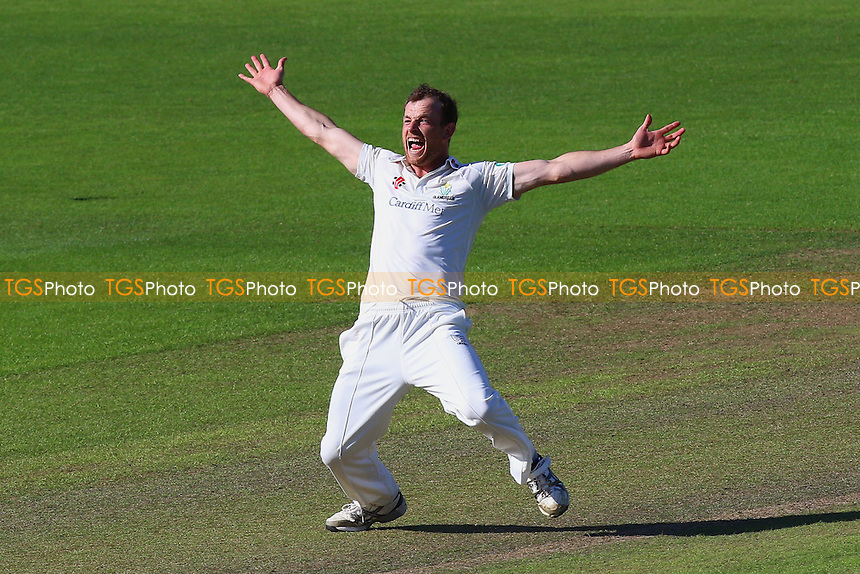 Graham Wagg of Glamorgan claims the wicket of Nick Browne, trapped lbw during Glamorgan CCC vs Essex CCC, Specsavers County Championship Division 2 Cricket at the SSE SWALEC Stadium on 22nd May 2016