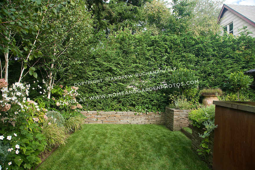 An Evergreen Hedge, Mixed Planting Beds And Stacked Stone Wall Border The  Lawn Area In