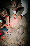 Mark Dodd (right to left), State Sea Turtle Program Coordinator of the Georgia Department of Natural Resources, Bonnie Berry, University of Georgia student, and Sarah Rose, Georgia DNR tech, tag a nesting sea turtles on Ossabaw Island, Georgia, June 18, 2012.