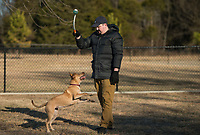 NWA Democrat-Gazette/BEN GOFF @NWABENGOFF<br /> Josh Erwin of Springdale plays fetch with his dog Ruby Wednesday, Feb. 7, 2018, at C.L. 'Charlie' &amp; Willie George Park in Springdale.