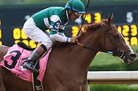 HOT SPRINGS, AR - April 14: Stellar Wind #3 with jockey Victor Espinoza aboard wins the Apple Blossom Handicap at Oaklawn Park on April 14, 2017 in Hot Springs, AR. (Photo by Ciara Bowen/Eclipse Sportswire/Getty Images)