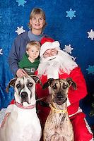 Dogs are photographed with Santa at a fundraiser for Dogs Deserve Better at Pet Pros in Redmond, WA on December 12, 2010. (photo by Karen Ducey)Santa's family, Kevin Brighton, including Great danes Cleo and Sagan, are photographed with Santa at a fundraiser for Dogs Deserve Better at Pet Pros in Redmond, WA on December 12, 2010. (photo by Karen Ducey)
