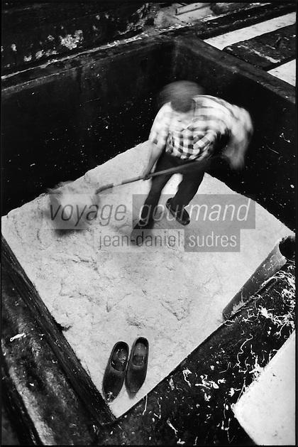 Europe/France/Alsace/67/Bas-Rhin/ Krautergersheim: Une choucrouterie chez Monsieur Pfleger, producteur de choucroute- En sabots de bois dans une cuve de choucroute