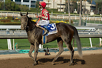ARCADIA, CA  APRIL 7: #3 Midnight Bisou, ridden by Mike Smith, after winning the Santa Anita Oaks (Grade l) on April 7, 2018, at Santa Anita Park in Arcadia, Ca.  (Photo by Casey Phillips/ Eclipse Sportswire/ Getty Images)