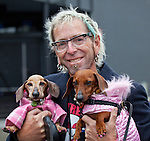 A pair of red dachshunds are dressed in haute couture by their proud human counterpart, Seattle, Washington, USA