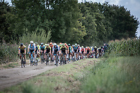 peloton on a off-road section<br /> <br /> Antwerp Port Epic 2019 <br /> One Day Race: Antwerp > Antwerp 187km<br /> <br /> ©kramon