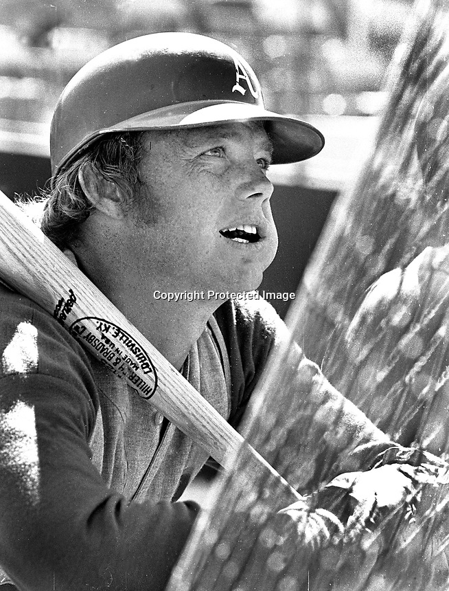 Oakland Athletics Dave Duncan leaning on batting cage,<br />1972 (photo/Ron Riesterer)