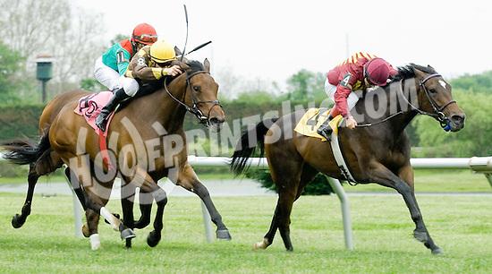 Clairinet winning at Delaware Park on 5/17/10