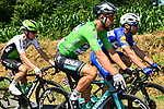 Green Jersey Peter Sagan (SVK) Bora-Hansgrohe in action during Stage 6 of the 2018 Tour de France running 181km from Brest to Mur-de-Bretagne Guerledan, France. 12th July 2018. <br /> Picture: ASO/Alex Broadway | Cyclefile<br /> All photos usage must carry mandatory copyright credit (&copy; Cyclefile | ASO/Alex Broadway)