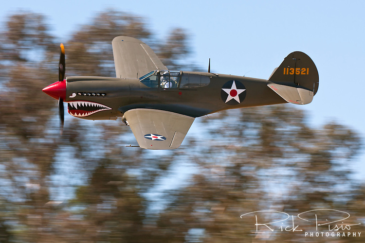 A Curtis P40 Warhawk in American Volunteer Group markings makes a pass during a fly-in at the Nut Tree Airport in Vacaville, California. The Curtiss P-40 first flew in 1938 and was used by the air forces of 28 nations, including those of most Allied powers during World War II, and remained in front line service until the end of the war. When production ceased in November of 1944 13,738 had been built, all at Curtiss-Wright Corporation's main production facility at Buffalo, New York.