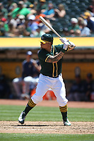 OAKLAND, CA - JULY 19:  Bruce Maxwell #13 of the Oakland Athletics bats against the Tampa Bay Rays during the game at the Oakland Coliseum on Wednesday, July 19, 2017 in Oakland, California. (Photo by Brad Mangin)