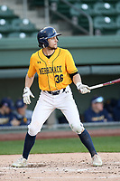 Center fielder Michael Jamele (36) of the Merrimack Warriors bats in a game against the Michigan State Spartans on Saturday, February 22, 2020, at Fluor Field at the West End in Greenville, South Carolina. Merrimack won, 7-5. (Tom Priddy/Four Seam Images)