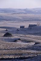 Europe/France/Languedoc-Roussillon/48/Lozère/Aubrac/Env de Nasbinals : Pâturages et burons à l'aube en hiver