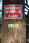 Dogs must be kept on a lead CCTV in operations signs on a  tree, Suffolk, England, Uk